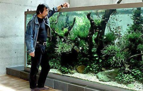 sejarah tehnik aquascape