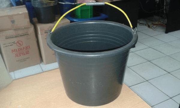 merawat ikan saat pemadaman listrik