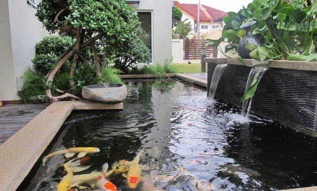 kolam koi dengan air terjun